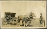 Horse and carriage on McConnell Farm, Bruce, N.D.