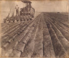 Plowing in Joliette, N.D.