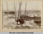 Lumber mill, McLean County, N.D.