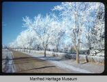 Frost on trees near Jim River Park, New Rockford, N.D.