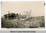 Horse-drawn binder, Mercer County, N.D.