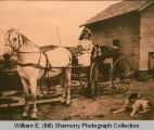 Woman in a buggy, North Dakota
