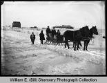 Riding horse drawn sleigh in winter, Wildrose, N.D.