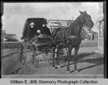 Women and children in horse drawn wagon, downtown, Wildrose, N.D.