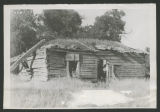 Dove-tailed log building with sod roof, Painted Woods, N.D.