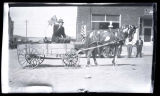 Man in horse-drawn cart, probably July 4th parade, Hettinger, N.D.