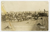Farm scene near Bathgate, N.D.