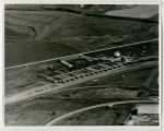 Aerial over cattle railroad, Williston, N.D.