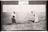 Mrs. Erling Monnes and Jean Lund hoeing a row, Powers Lake, N.D.
