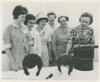 Ladies viewing wig display at North Dakota Democratic-NPL convention