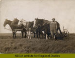 Man standing by horse teams in field