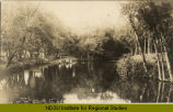 Scene on Goose River, Woodland Park, Hillsboro, N.D.