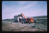 Haying, Ray Schnell farm, Dickinson, N.D.