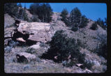 Rock formations, Theodore Roosevelt National Park, N.D.