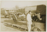 Man with ox cart beside military convoy during the Korean War