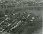 Aerial over Belmont neighborhood, Fargo, N.D. during flood