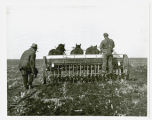 Planting with a horse-drawn drill