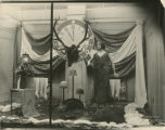 Benevolent and Protective Order of Elks window display, Herbst Department Store, Fargo, N.D.